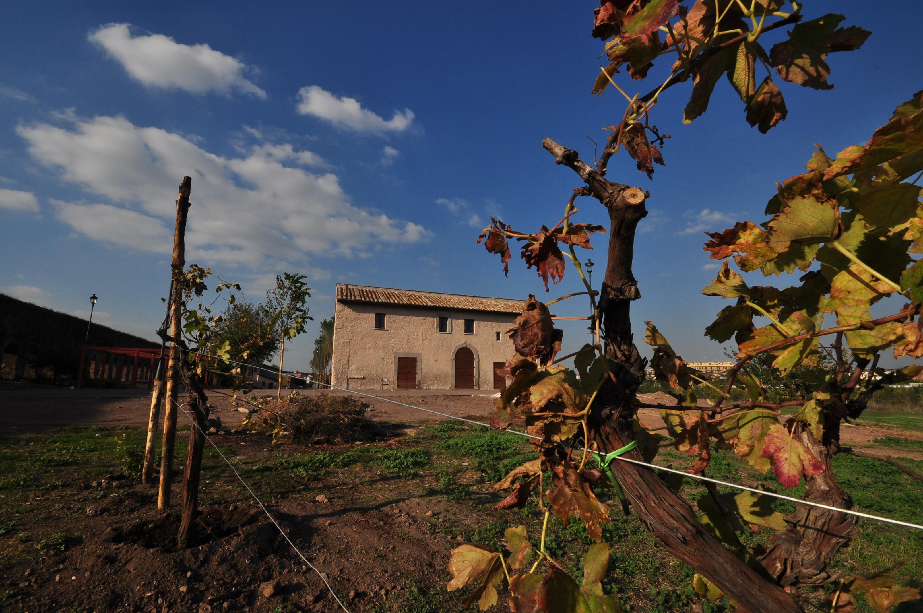 paesaggio rigenerazione periferie torre del fiscale roma lazio
