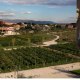prato fiorito il vino il parco dove si produce vino di alta qualità